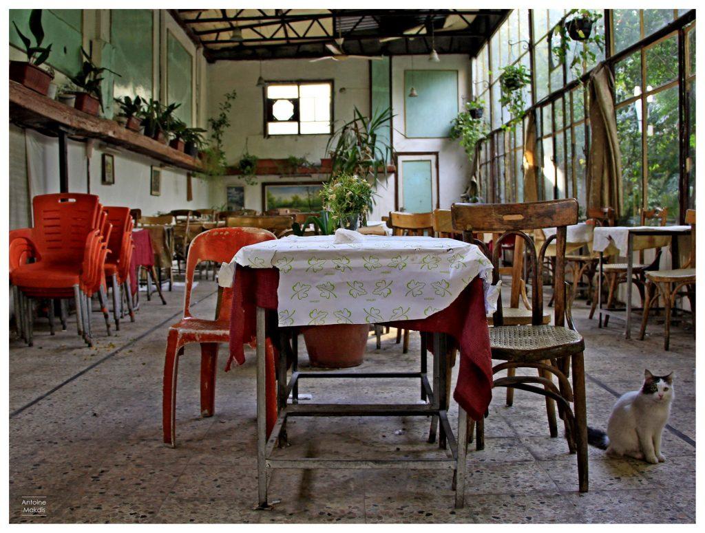 مقهى الشباب - انطوان مقديس - حلب